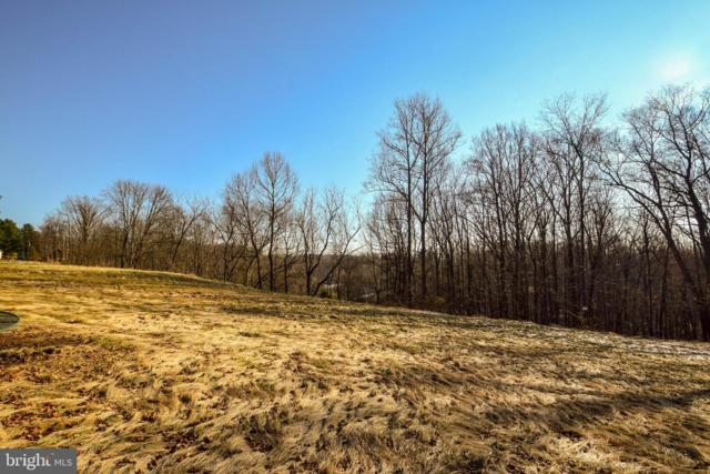 294 Wiley Mill Road, NEW PARK, PA 17352 (#PAYK109296) :: The Jim Powers Team