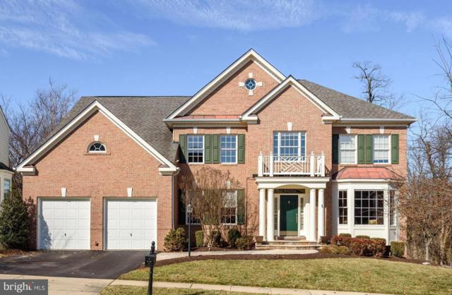 19030 Coton Farm Court, LEESBURG, VA 20176 (#VALO327810) :: Remax Preferred | Scott Kompa Group