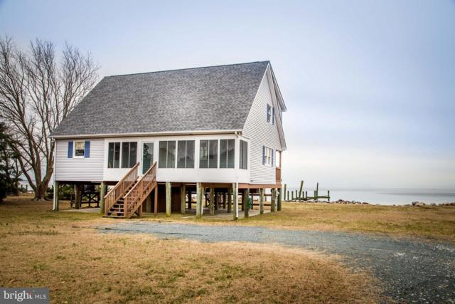20138 Nanticoke Road, NANTICOKE, MD 21840 (#MDWC101818) :: Brandon Brittingham's Team