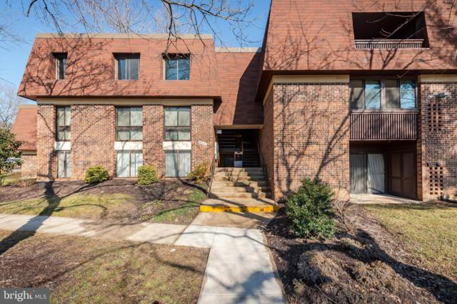 5247 W Running Brook Road #201, COLUMBIA, MD 21044 (#MDHW240774) :: Colgan Real Estate