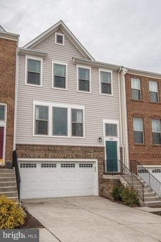 207 Natural Terrace SW, LEESBURG, VA 20175 (#VALO330134) :: The Piano Home Group