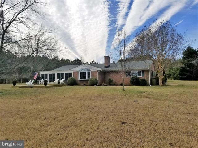 25900 Goose Neck Road, ROYAL OAK, MD 21662 (#MDTA130238) :: RE/MAX Coast and Country