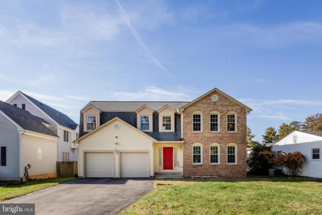 10216 Nolan Drive, ROCKVILLE, MD 20850 (#MDMC582374) :: The Withrow Group at Long & Foster