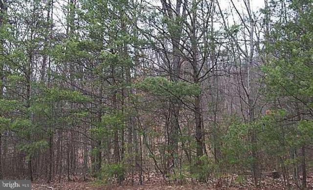 493 Oates Road, STAR TANNERY, VA 22654 (#VAFV142210) :: ExecuHome Realty