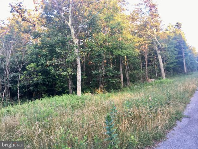 Lot 197 Farwood Trail, WINCHESTER, VA 22602 (#VAFV142222) :: Blue Key Real Estate Sales Team