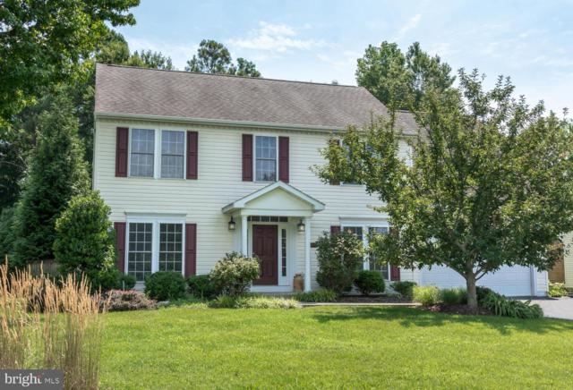 608 Old Love Point Road, STEVENSVILLE, MD 21666 (#MDQA133480) :: Remax Preferred | Scott Kompa Group