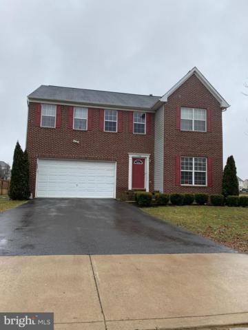 778 Holly Leaf Road, CULPEPER, VA 22701 (#VACU133108) :: Great Falls Great Homes