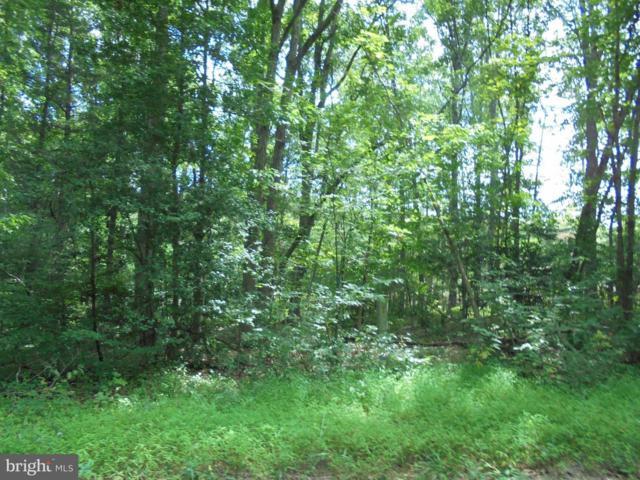 New Hampshire Road #31, RHOADESVILLE, VA 22542 (#VAOR130312) :: CENTURY 21 Core Partners