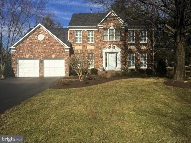 13602 White Stone Court, CLIFTON, VA 20124 (#VAFX972178) :: The Piano Home Group