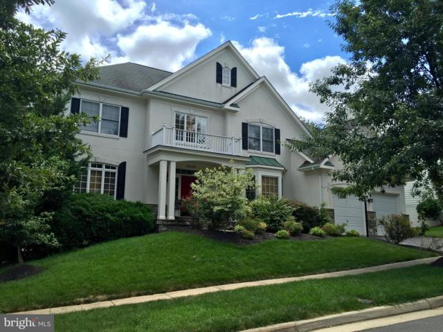 19138 Stream Crossing Court, LEESBURG, VA 20176 (#VALO352754) :: ExecuHome Realty