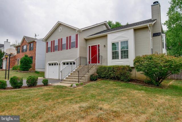 19 Thornberry Lane, STAFFORD, VA 22556 (#VAST200554) :: Colgan Real Estate