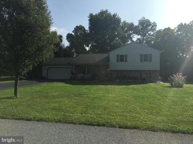 5 Spring Hill Lane, ELIZABETHTOWN, PA 17022 (#PALA122334) :: The Joy Daniels Real Estate Group