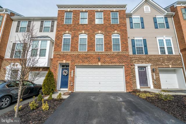42206 Plainridge Terrace, ALDIE, VA 20105 (#VALO352768) :: The Greg Wells Team