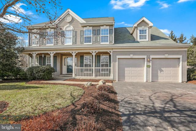 1207 Reins Circle, NEW HOPE, PA 18938 (#PABU442290) :: Colgan Real Estate