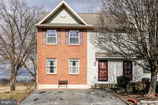 342 Wild Cherry Lane, MARIETTA, PA 17547 (#PALA122370) :: The Craig Hartranft Team, Berkshire Hathaway Homesale Realty
