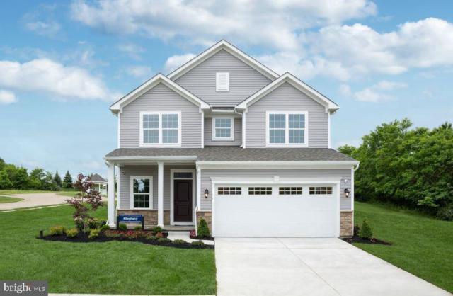 000 Brooke Village Drive, FREDERICKSBURG, VA 22405 (#VAST200578) :: Cristina Dougherty & Associates
