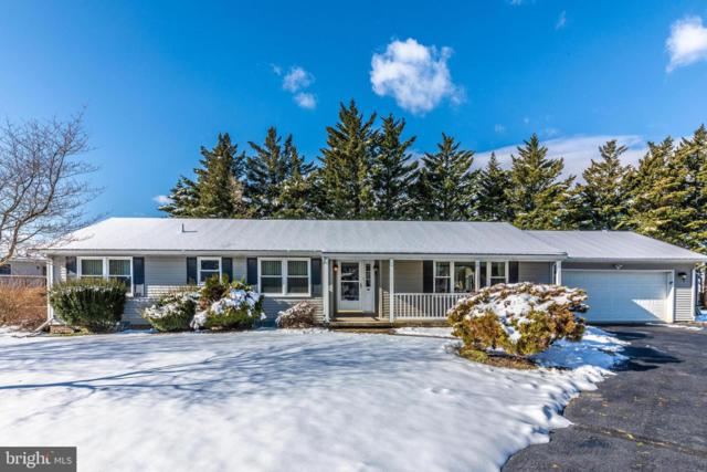 110 Elk Drive, HANOVER, PA 17331 (#PAAD104992) :: The Heather Neidlinger Team With Berkshire Hathaway HomeServices Homesale Realty