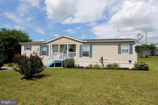 135 Raptor Drive, HANOVER, PA 17331 (#PAAD104994) :: Teampete Realty Services, Inc