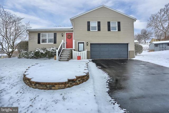 5 Greenleaf Lane, ELIZABETHTOWN, PA 17022 (#PALA122406) :: The Joy Daniels Real Estate Group
