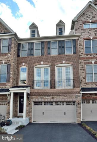 24993 Cambridge Hill Terrace, CHANTILLY, VA 20152 (#VALO352866) :: The Piano Home Group