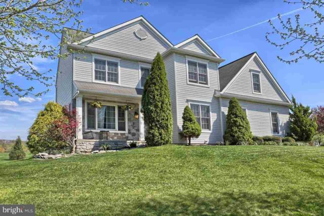 2358 Raleigh Road, HUMMELSTOWN, PA 17036 (#PADA106398) :: John Smith Real Estate Group