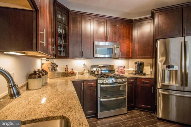 43145 Sunderland Terrace #306, BROADLANDS, VA 20148 (#VALO352884) :: LaRock Realtor Group