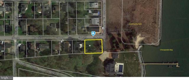 1195 Cedar Avenue, SHADY SIDE, MD 20764 (#MDAA373922) :: Colgan Real Estate