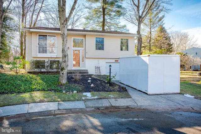 5410 April Wind Court, COLUMBIA, MD 21045 (#MDHW249500) :: The Sebeck Team of RE/MAX Preferred