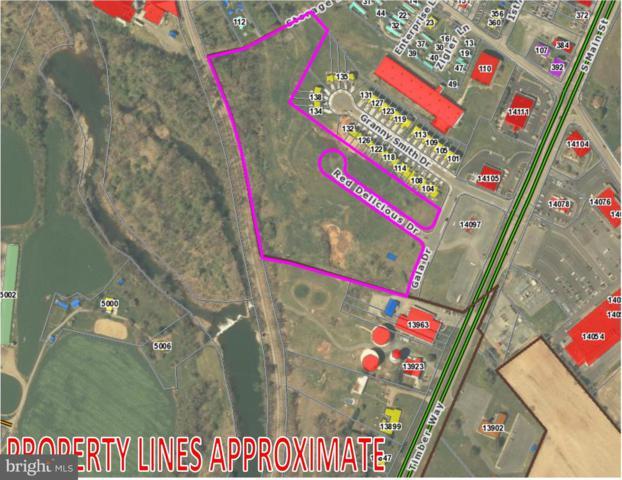 0 Red Delicious Drive, TIMBERVILLE, VA 22853 (#VARO100674) :: Colgan Real Estate