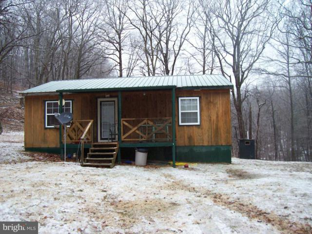 49 Mount Top Road, MATHIAS, WV 26812 (#WVHD104540) :: Hill Crest Realty