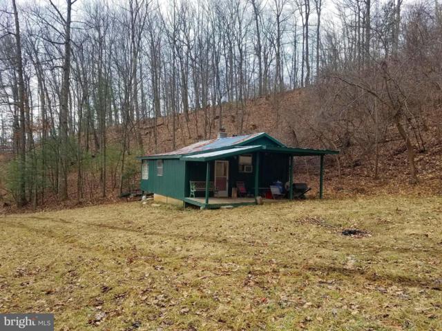 Hunter Road, MAURERTOWN, VA 22644 (#VASH113982) :: Jacobs & Co. Real Estate