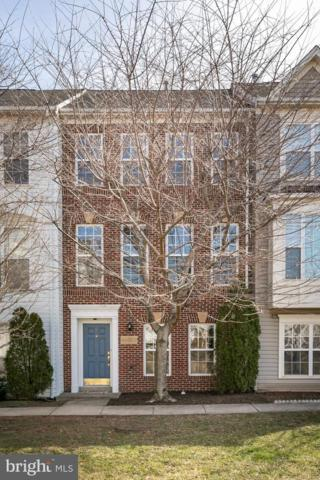 44303 Shehawken Terrace, ASHBURN, VA 20147 (#VALO353054) :: Colgan Real Estate