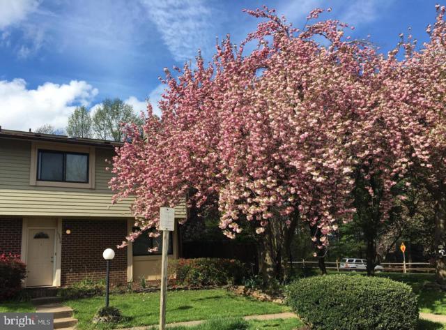 10678 Myrtle Oak Court, BURKE, VA 22015 (#VAFX992502) :: Great Falls Great Homes