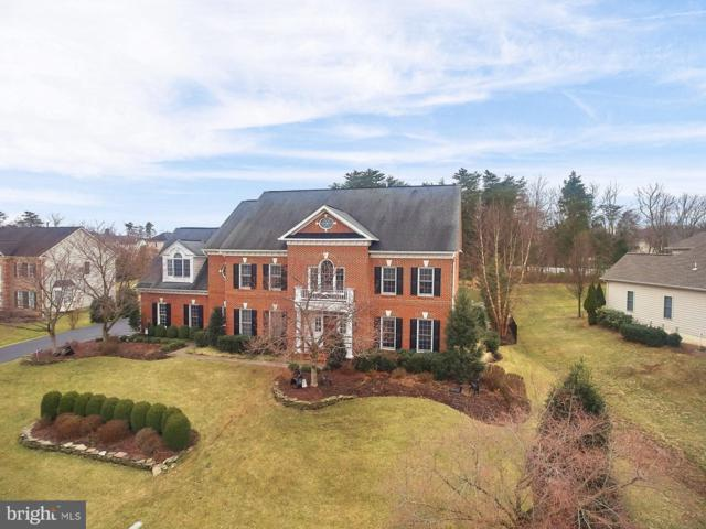 14495 Chamberry Circle, HAYMARKET, VA 20169 (#VAPW432274) :: Jacobs & Co. Real Estate