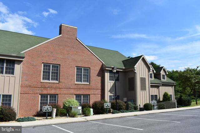 14200 NORTHERN LIGHTS Drive #40, MERCERSBURG, PA 17236 (#PAFL160338) :: The Joy Daniels Real Estate Group