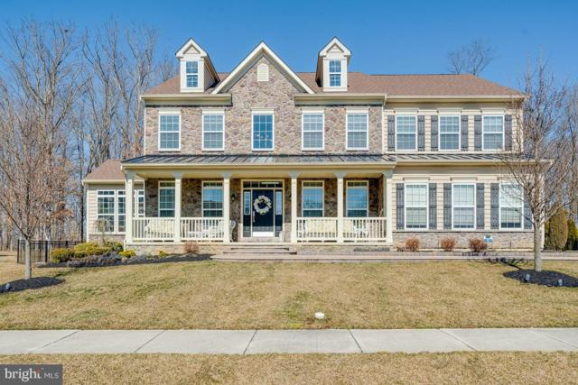 1215 Glossy Ibis Court, MIDDLETOWN, DE 19709 (#DENC415092) :: Compass Resort Real Estate