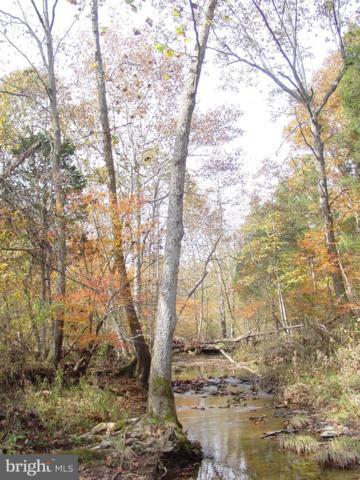 Creek Bend Court, STEPHENS CITY, VA 22655 (#VAWR133670) :: Circadian Realty Group
