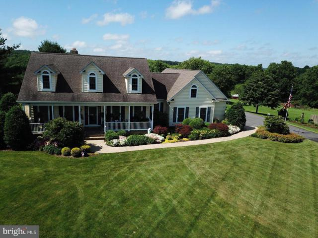 2407 Flag Marsh Road, MOUNT AIRY, MD 21771 (#MDCR181546) :: Jim Bass Group of Real Estate Teams, LLC