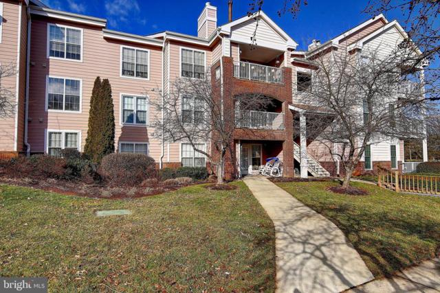 21026 Timber Ridge Terrace #304, ASHBURN, VA 20147 (#VALO353168) :: The Greg Wells Team