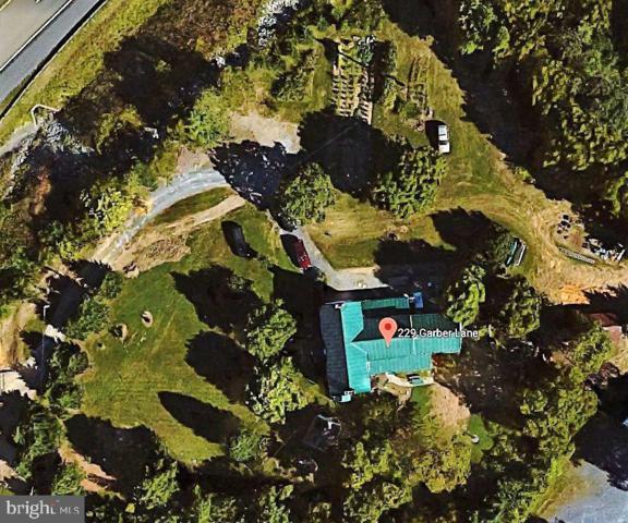229 Garber Lane, WINCHESTER, VA 22602 (#VAFV144752) :: Jacobs & Co. Real Estate