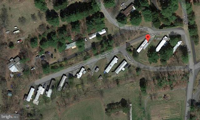 0 Fidlers Trailer Park, PINE GROVE, PA 17963 (#PASK120632) :: Ramus Realty Group