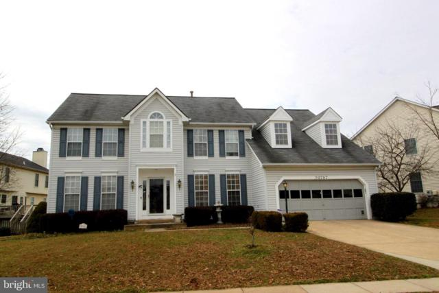 20787 Laplume Place, ASHBURN, VA 20147 (#VALO353192) :: Colgan Real Estate