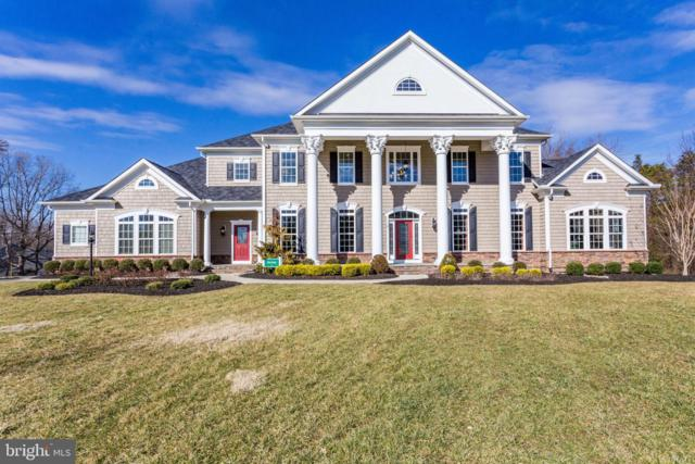 8 Sweet William Drive, STAFFORD, VA 22554 (#VAST200718) :: Great Falls Great Homes