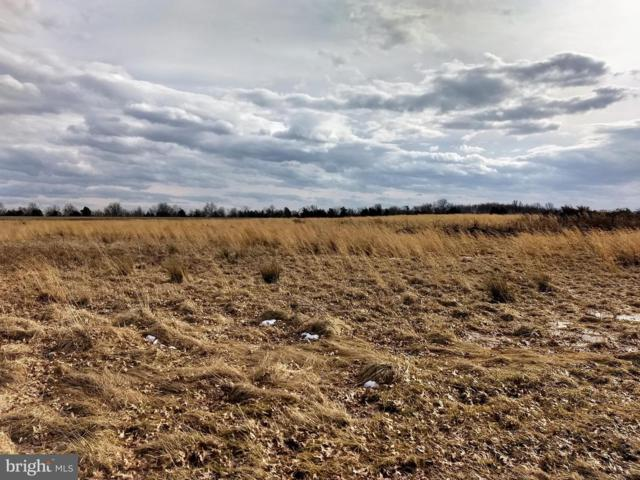 Lot 13 Shady Dell Road, DOVER, PA 17315 (#PAYK110222) :: The Heather Neidlinger Team With Berkshire Hathaway HomeServices Homesale Realty