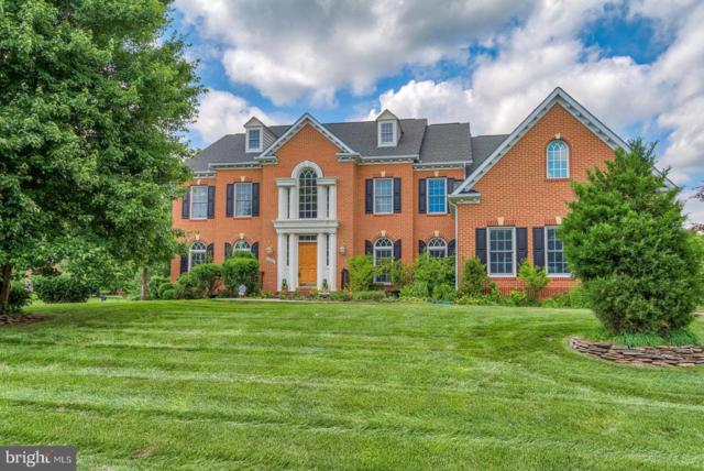 10910 Great Point Court, GREAT FALLS, VA 22066 (#VAFX993046) :: Great Falls Great Homes