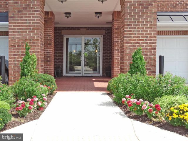 1403 Wigeon Way #207, GAMBRILLS, MD 21054 (#MDAA374418) :: Keller Williams Pat Hiban Real Estate Group
