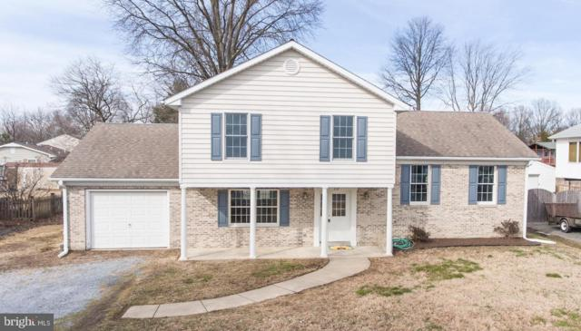 218 Ackerman Road, STEVENSVILLE, MD 21666 (#MDQA136792) :: Colgan Real Estate