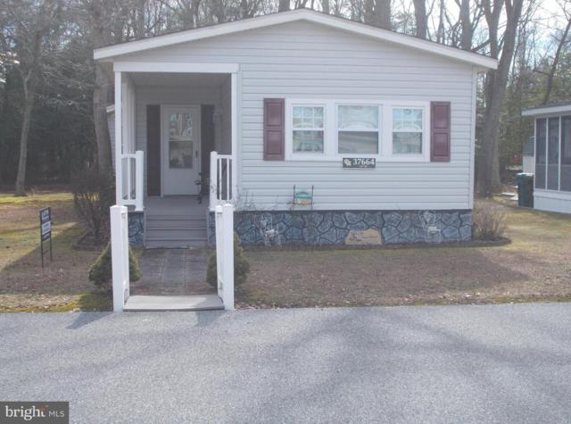 37664 East Shady Drive #15559, SELBYVILLE, DE 19975 (#DESU132286) :: RE/MAX Coast and Country