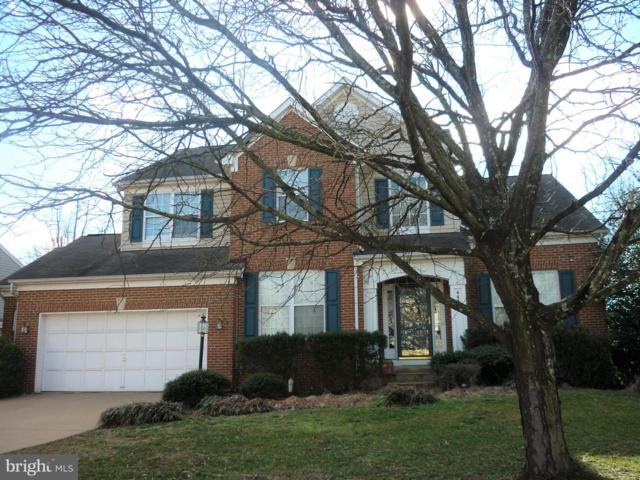 44319 Ladiesburg Place, ASHBURN, VA 20147 (#VALO353360) :: The Maryland Group of Long & Foster