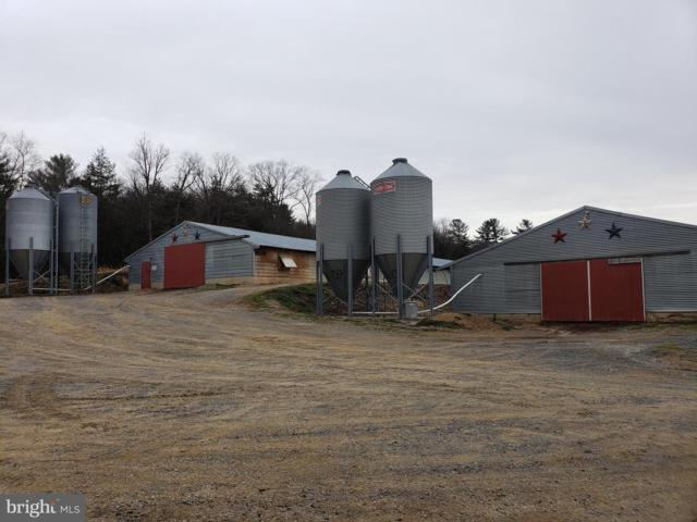18229 Runions Creek Road, BROADWAY, VA 22815 (#VARO100678) :: Labrador Real Estate Team